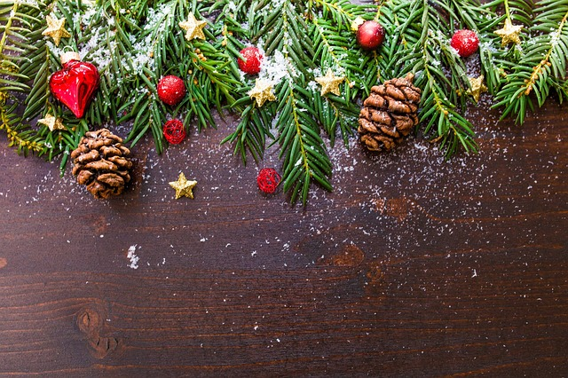 vánoční větvičky.jpg