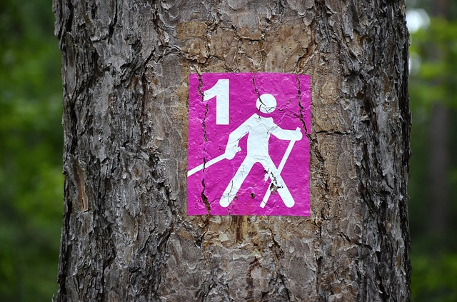 značka pro nordic walking.jpg