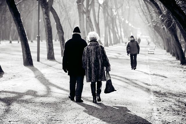 procházka álejí